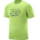 Salomon Explore Graphic Kortærmet T-shirt Herrer grøn